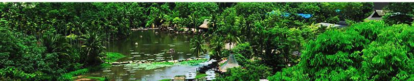 呀诺达热带雨林团购实景