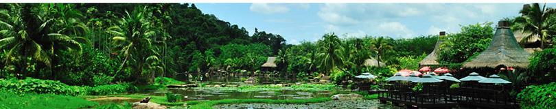 海南三亚呀诺达热带雨林景区实景欣赏