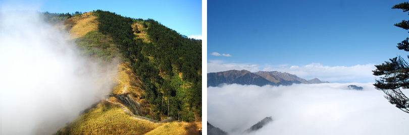 西岭雪山图片欣赏