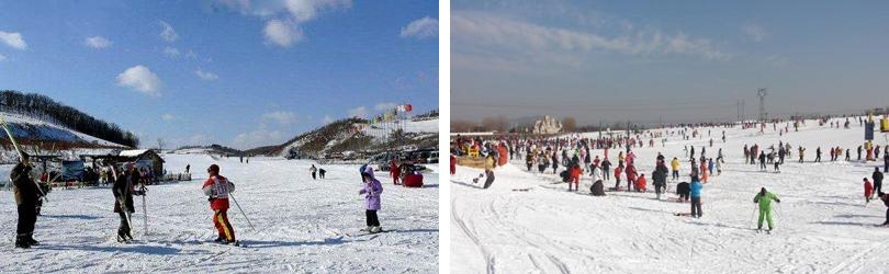 莲花山滑雪场门票