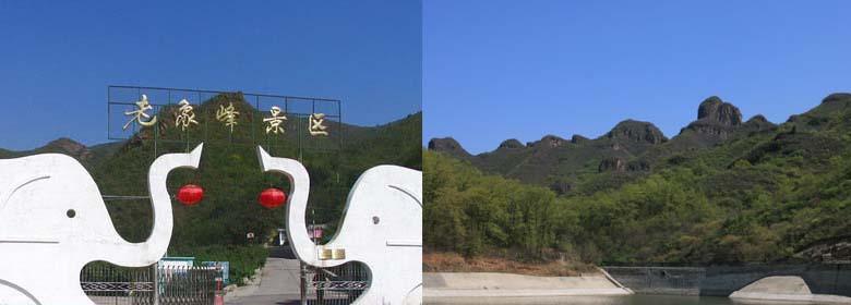 老象峰简介: 老象峰景区坐落于北京平谷区大华山镇小峪子村北境内,景区环境宜人,仅30处美景形成一番情趣盎然的景色,许多的景点点缀着整个景区,让我们心旷神怡。 来到老象峰景区,特别是登上山峰的时候宜人的景色和清爽无比的气候,天然形成的奇峰满山遍野的核桃,如诗如画,鸟语花香如人间仙境一般,既能体验采摘的乐趣,又能找到乘凉避暑的好去处。 老象峰外形惟妙惟肖,成为天下奇观,堪称中华一绝,自然情趣油然而生。老象峰景区植被茂盛,宏伟的山势和葱郁的植被覆盖以及到处可见的野生动物群落,使得这里的生态系统更加完善,老象峰的