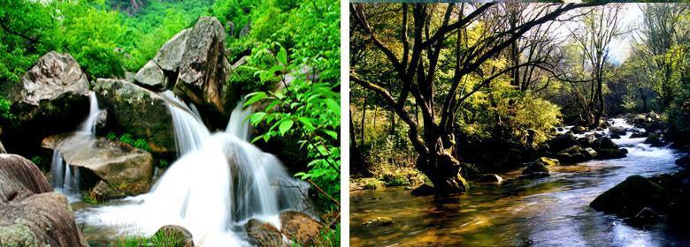 新密神仙洞门票团购,郑州神仙洞森林公园团购图片