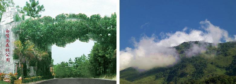 白鹭岛森林公园门票团购,滁州白鹭岛森林公园团购仅15
