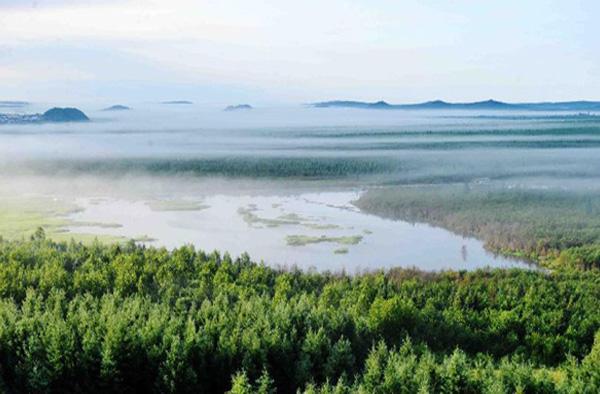 伊春乌伊岭湿地公园实景照片