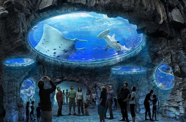 香港海洋公园图片展示