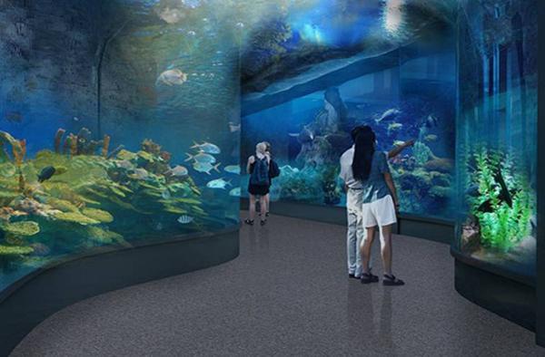大明湖海底世界实景照片