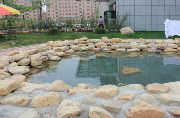 五龙温泉实景照片