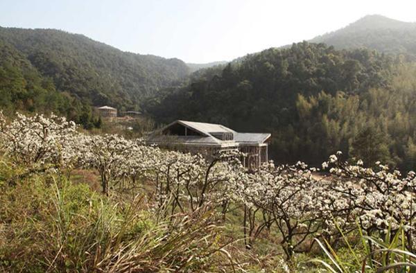 南平瀑布林实景照片