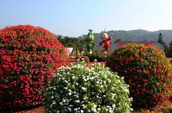 东南花都花博园图片展示