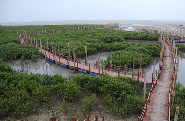 北海金海湾红树林地图展示