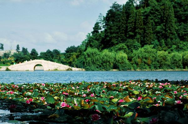 同寿山水图片展示