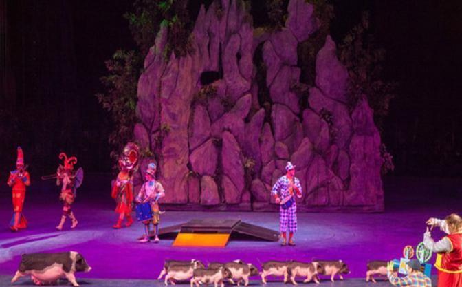 最奢华的马戏表演,更拥有长隆大马戏森林密码表演场