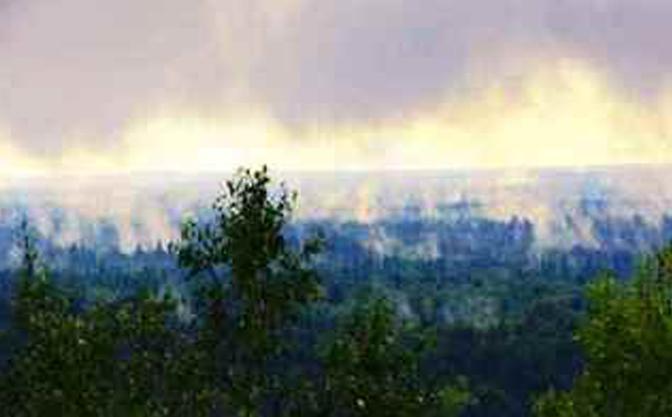 长白山火山遗址风景