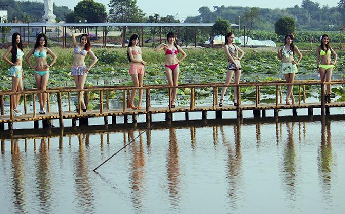江夏鑫农湖万亩荷花园