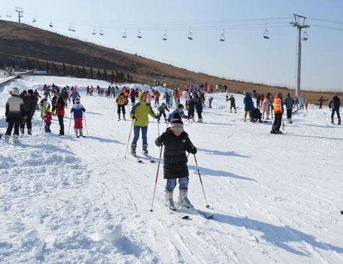 青岛金山滑雪场游客滑雪