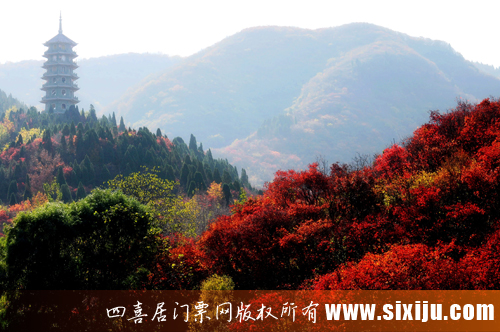 红叶谷美景