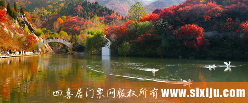 秋天的红叶谷