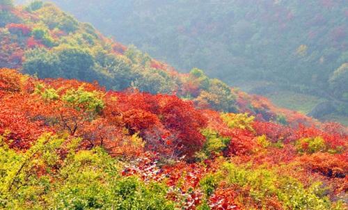 郑州竹林长寿山
