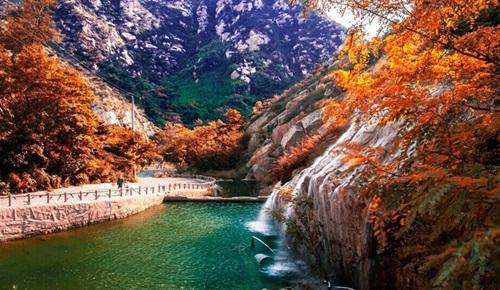 青岛茶山风景图