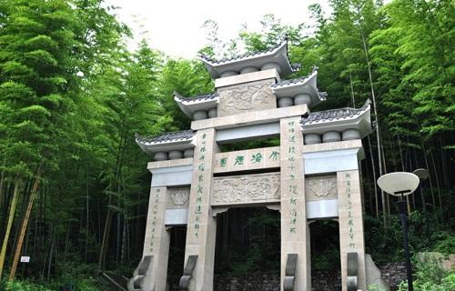 茶山竹海美景