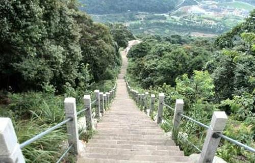 天童国家森林公园风景