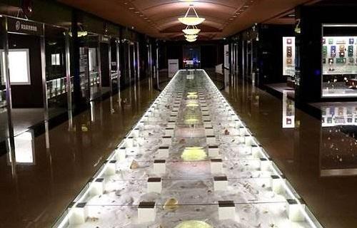 青岛贝壳博物馆展馆内景